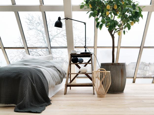 Green ideas interior decorating house plants 3